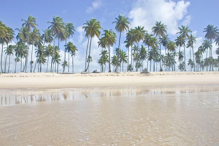 Clique na foto para encontrar hotéis em Gaibu!