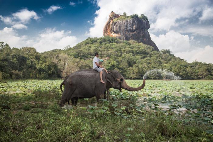 Viajando com Pimpolhos comenta: destinos improváveis para viajar com crianças   Skyscanner Brasil